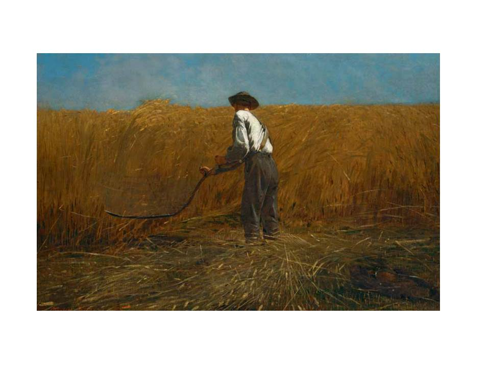 "Winslow Homer, ""Veteran in a New Field,"" (1865)"